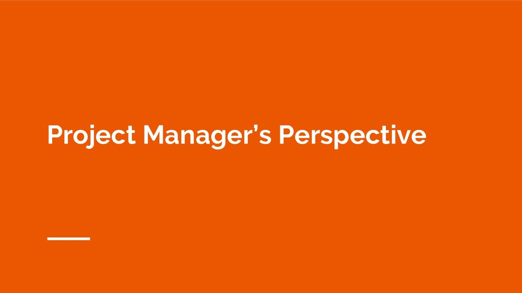 Project Manager's Perspective