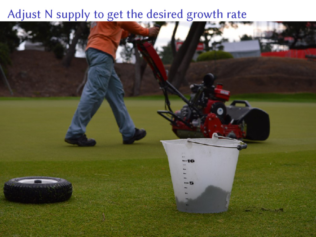 Adjust N supply to get the desired growth rate