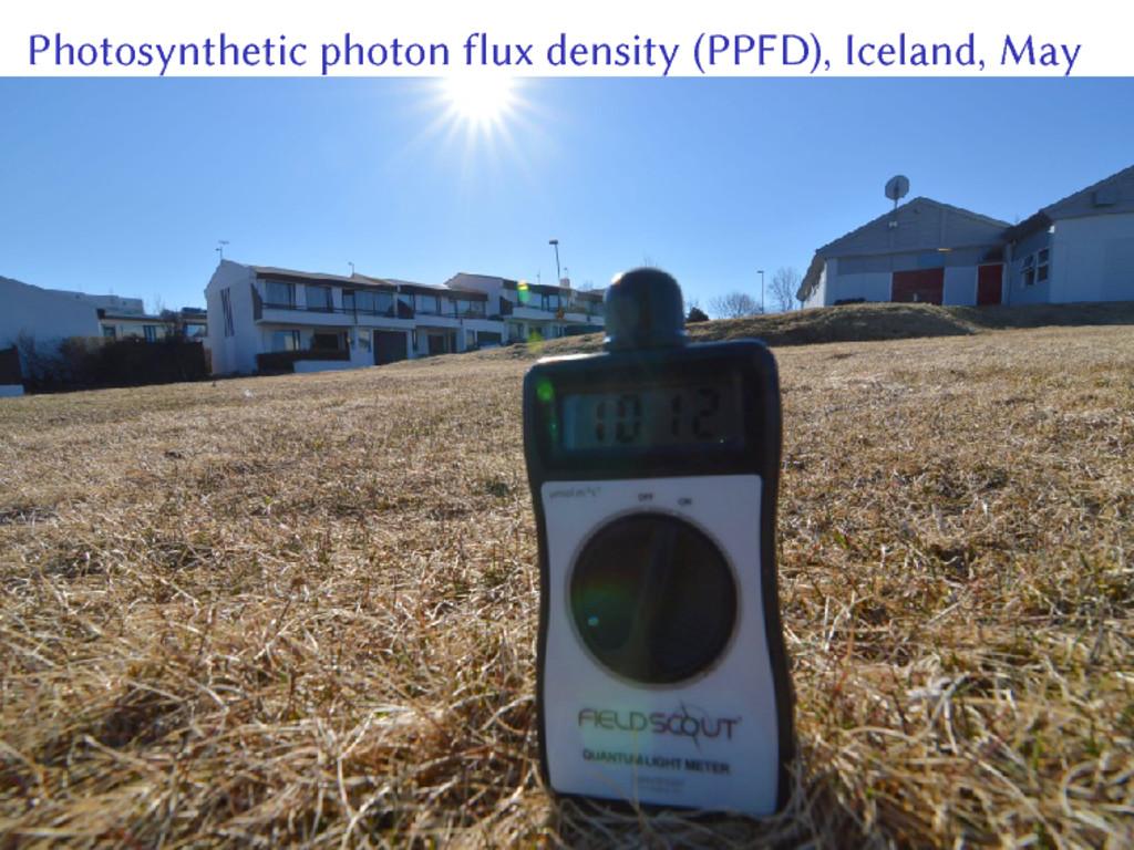 Photosynthetic photon flux density (PPFD), Icel...