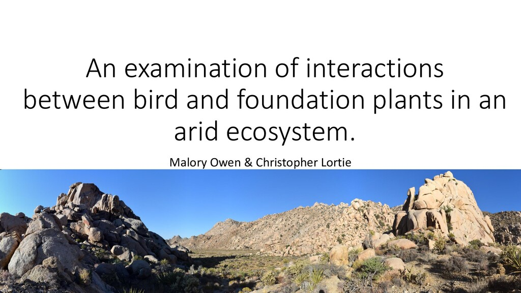 An examination of interactions between bird and...