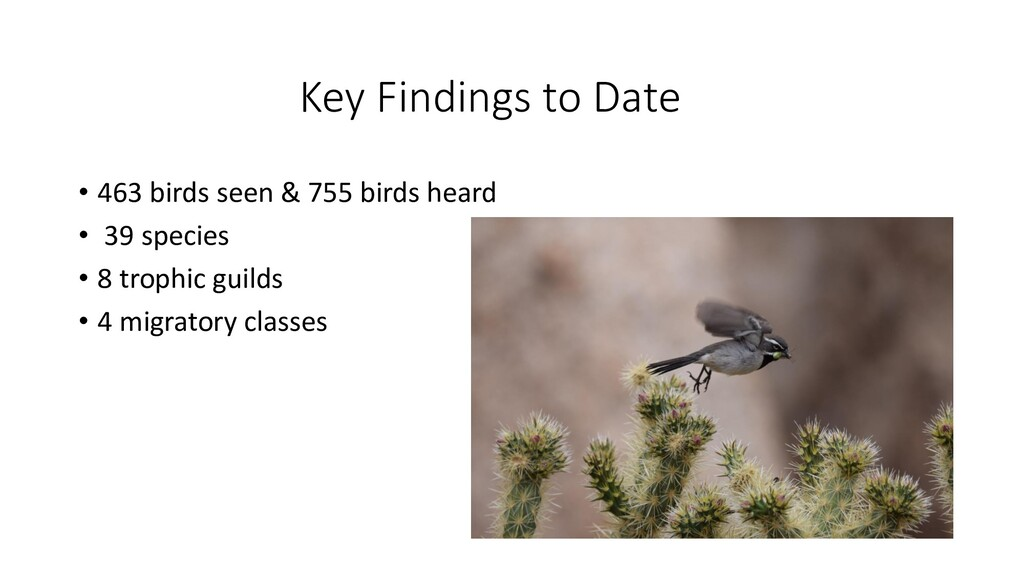 Key Findings to Date • 463 birds seen & 755 bir...