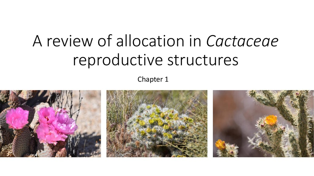 A review of allocation in Cactaceae reproductiv...