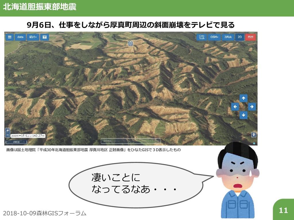 2018-10-09森林GISフォーラム 11 北海道胆振東部地震 画像は国土地理院「平成30...