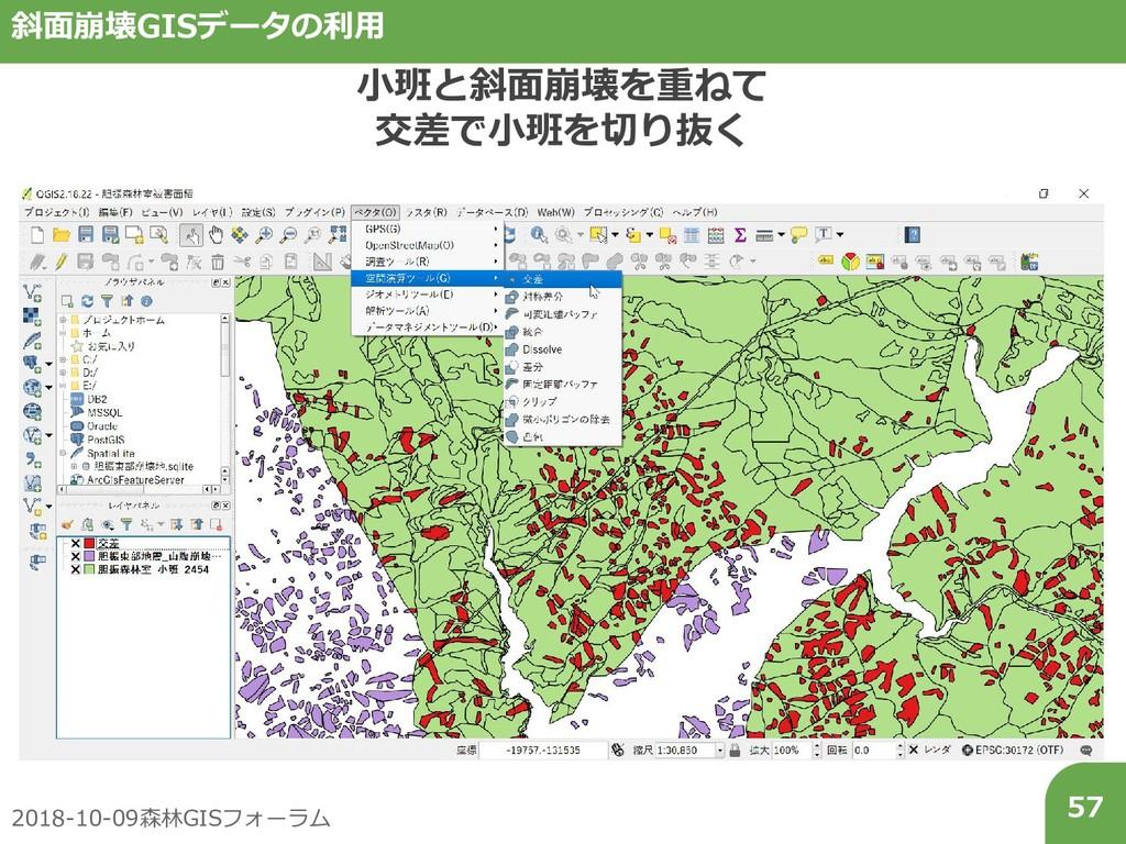 2018-10-09森林GISフォーラム 57 斜面崩壊GISデータの利用 小班と斜面崩壊を重...