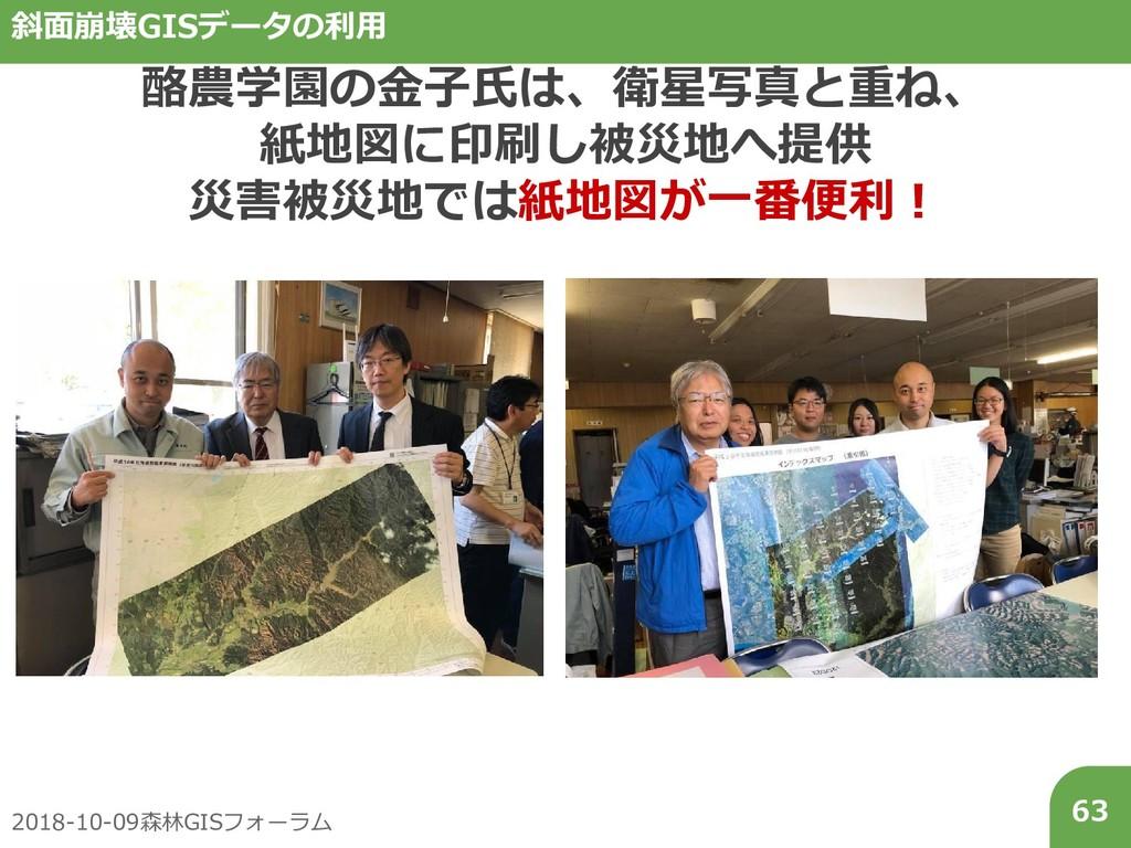 2018-10-09森林GISフォーラム 63 斜面崩壊GISデータの利用 酪農学園の金子氏は...