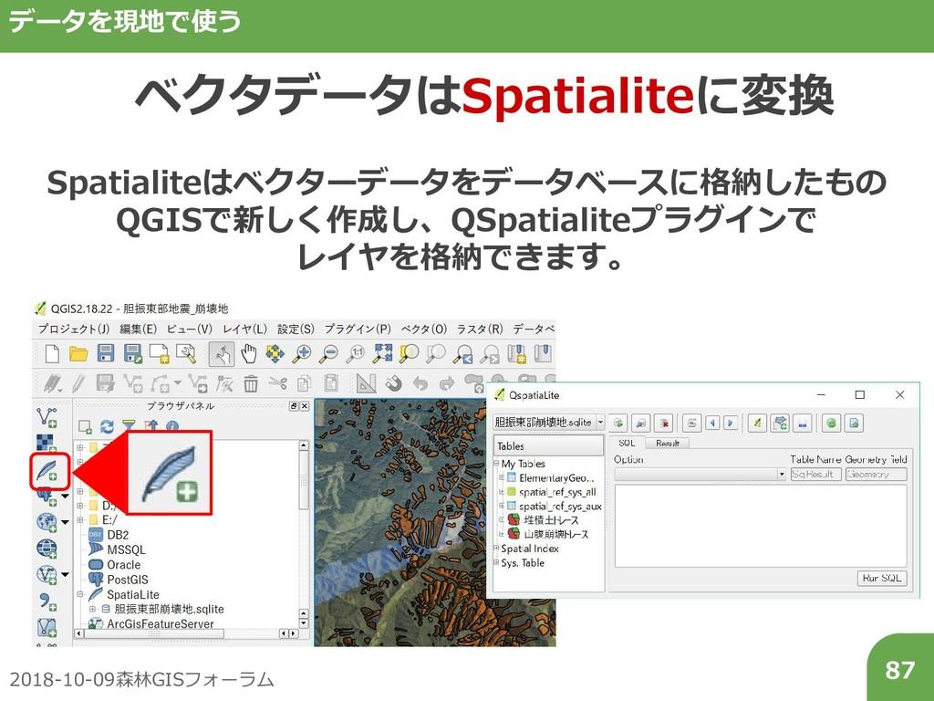 2018-10-09森林GISフォーラム 87 データを現地で使う ベクタデータはSpatia...