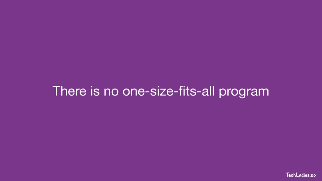 TechLadies.co There is no one-size-fits-all prog...