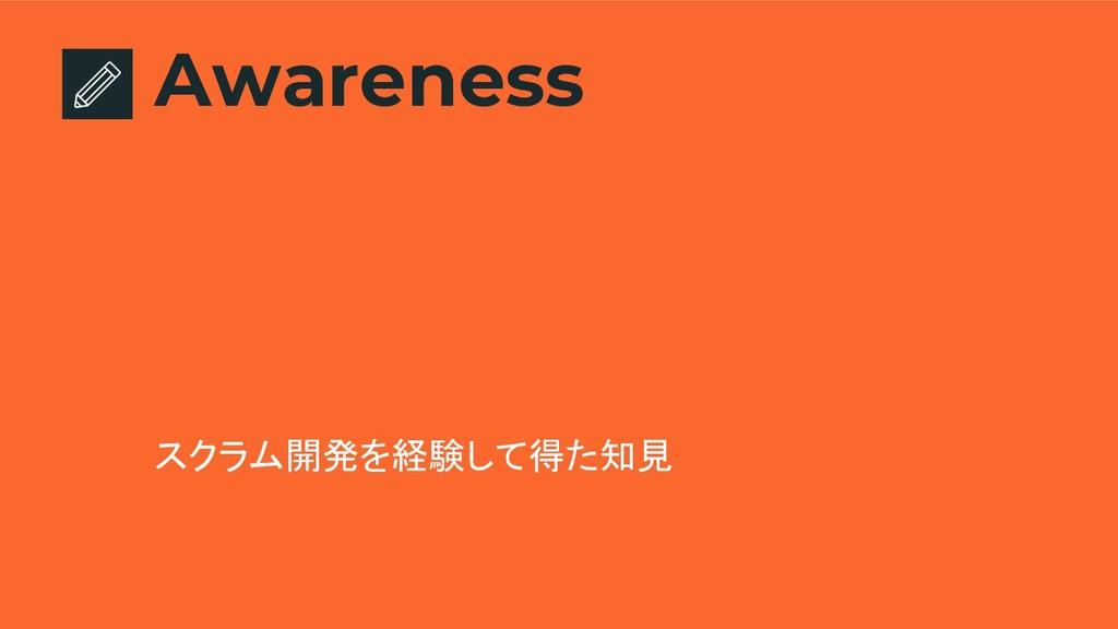 Awareness スクラム開発を経験して得た知見