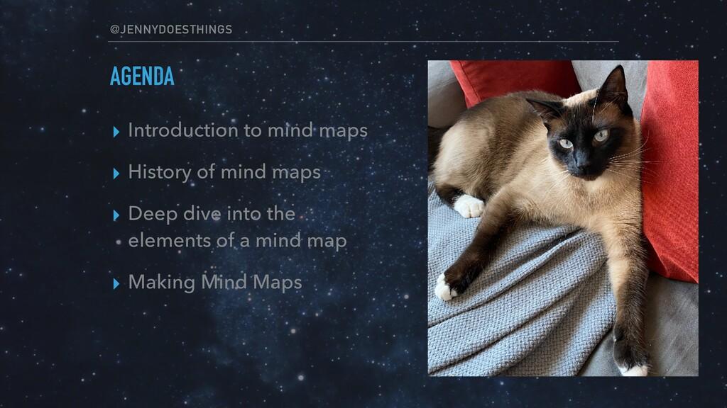 @JENNYDOESTHINGS AGENDA ▸ Introduction to mind ...