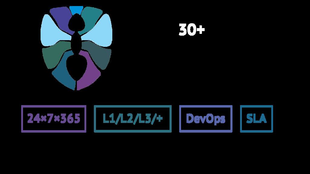 24×7×365 L1/L2/L3/+ DevOps SLA 30+
