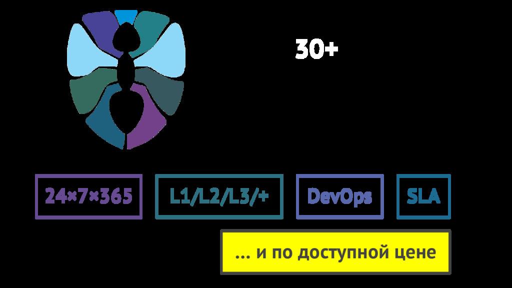 24×7×365 L1/L2/L3/+ DevOps SLA 30+ … и по досту...