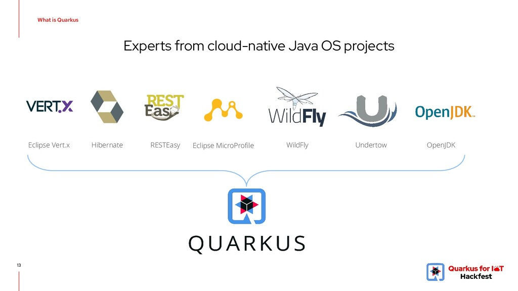 Experts from cloud-native Java OS projects 13 E...
