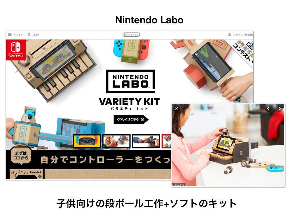 ܦӦऀݽಠͰ͋Δ Nintendo Labo ࢠڙ͚ͷஈϘʔϧ࡞+ιϑτͷΩοτ