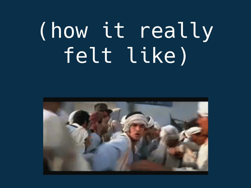 (how it really felt like)