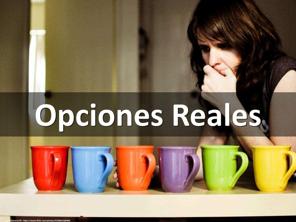 Opciones Reales cc: maclauren70 - https://www.f...