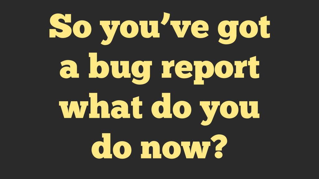So you've got a bug report what do you do now?