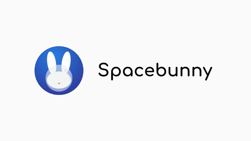 Spacebunny