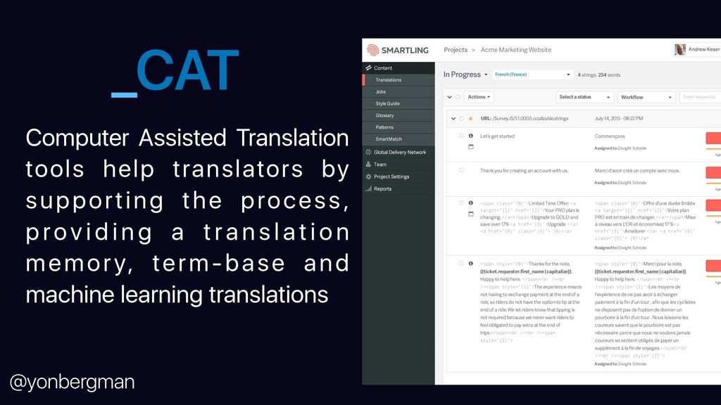 @yonbergman _CAT Computer Assisted Translation ...