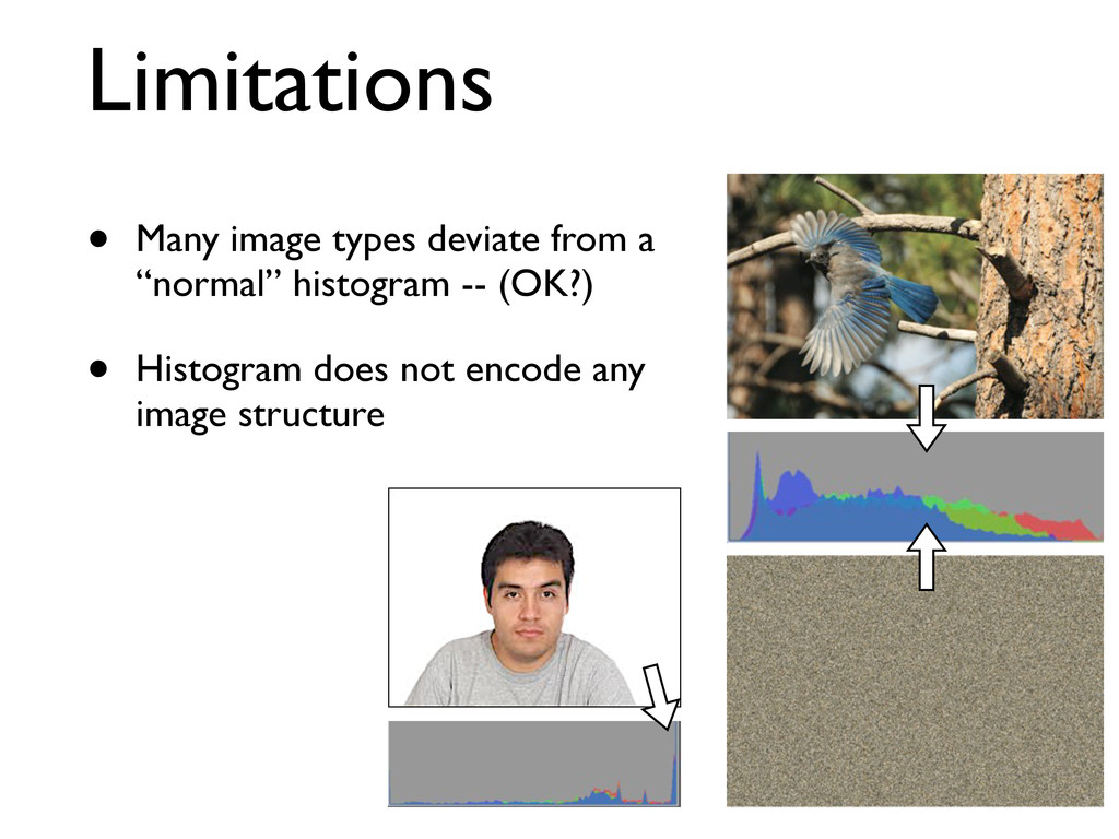 "Limitations • Many image types deviate from a ""..."