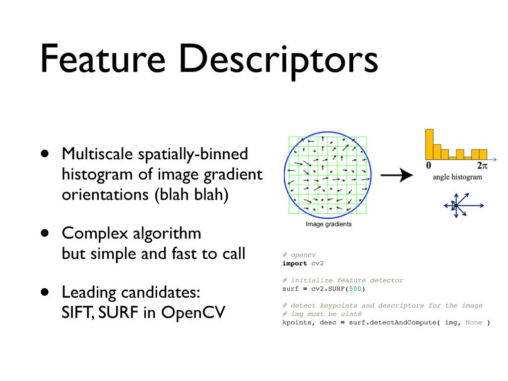 Feature Descriptors • Multiscale spatially-binn...