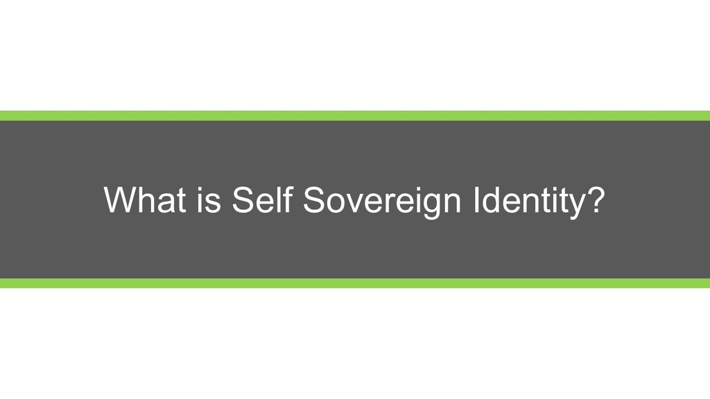 What is Self Sovereign Identity?