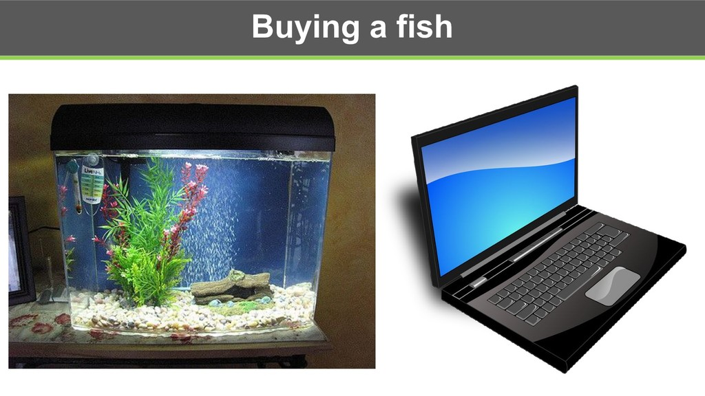 Buying a fish