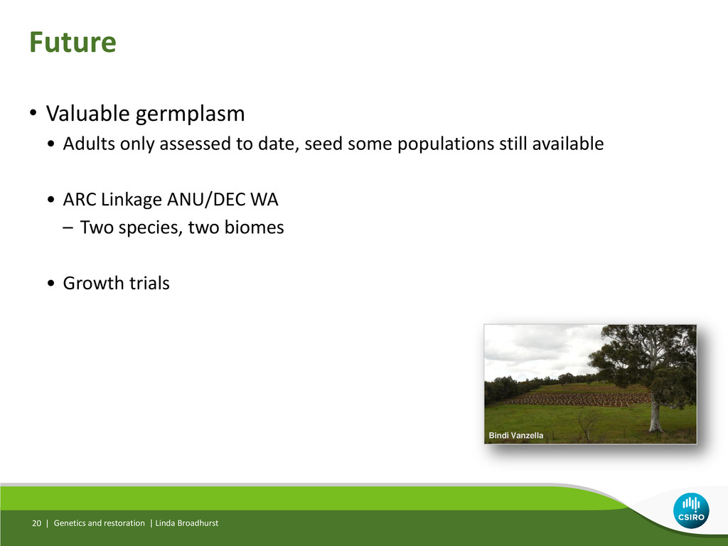 • Valuable germplasm • Adults only assessed to ...