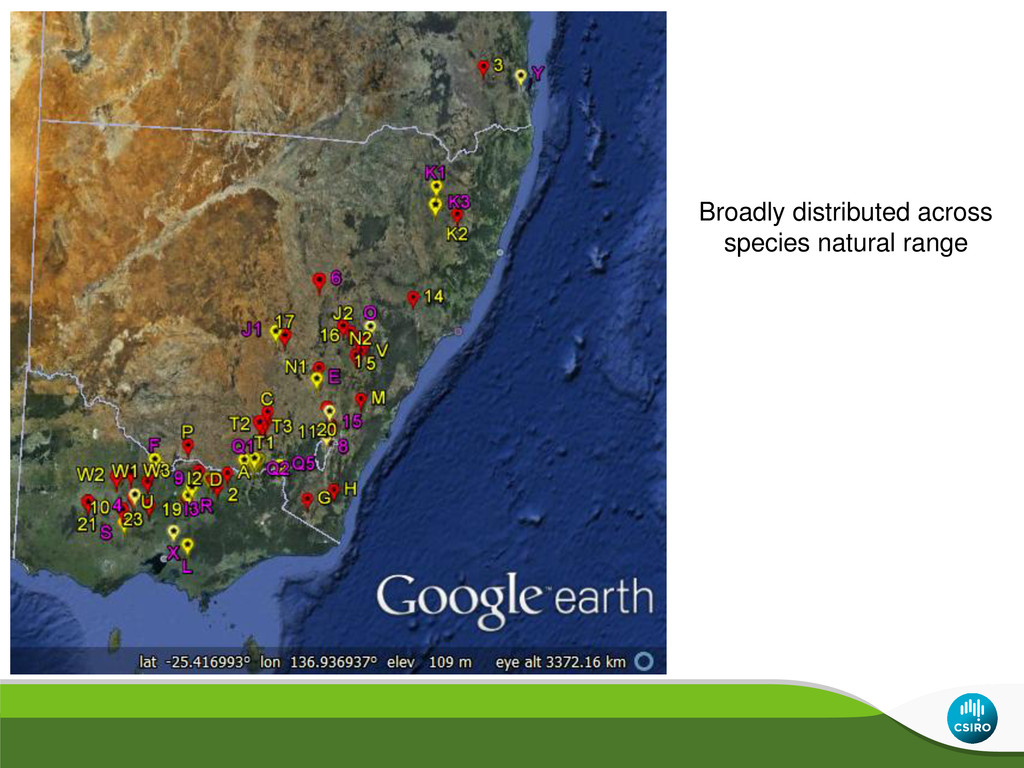Broadly distributed across species natural range