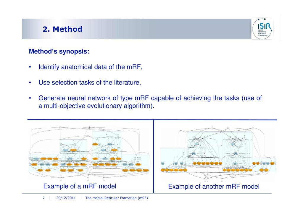29/12/2011 The medial Reticular Formation (mRF)...