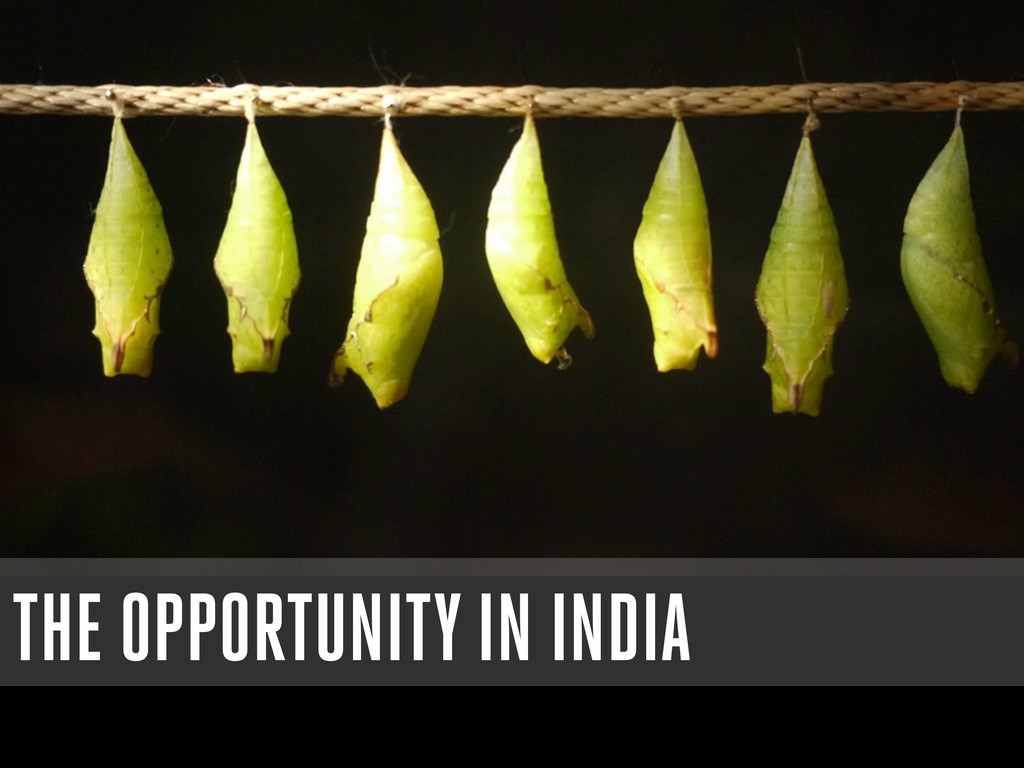 THE OPPORTUNITY IN INDIA