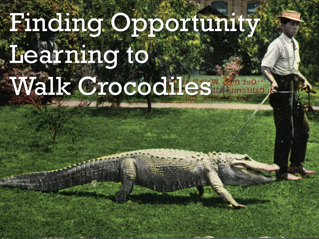 Finding Opportunity Learning to Walk Crocodiles