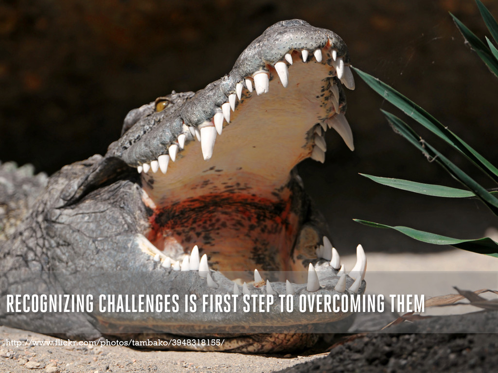RECOGNIZING CHALLENGES IS FIRST STEP TO OVERCOM...