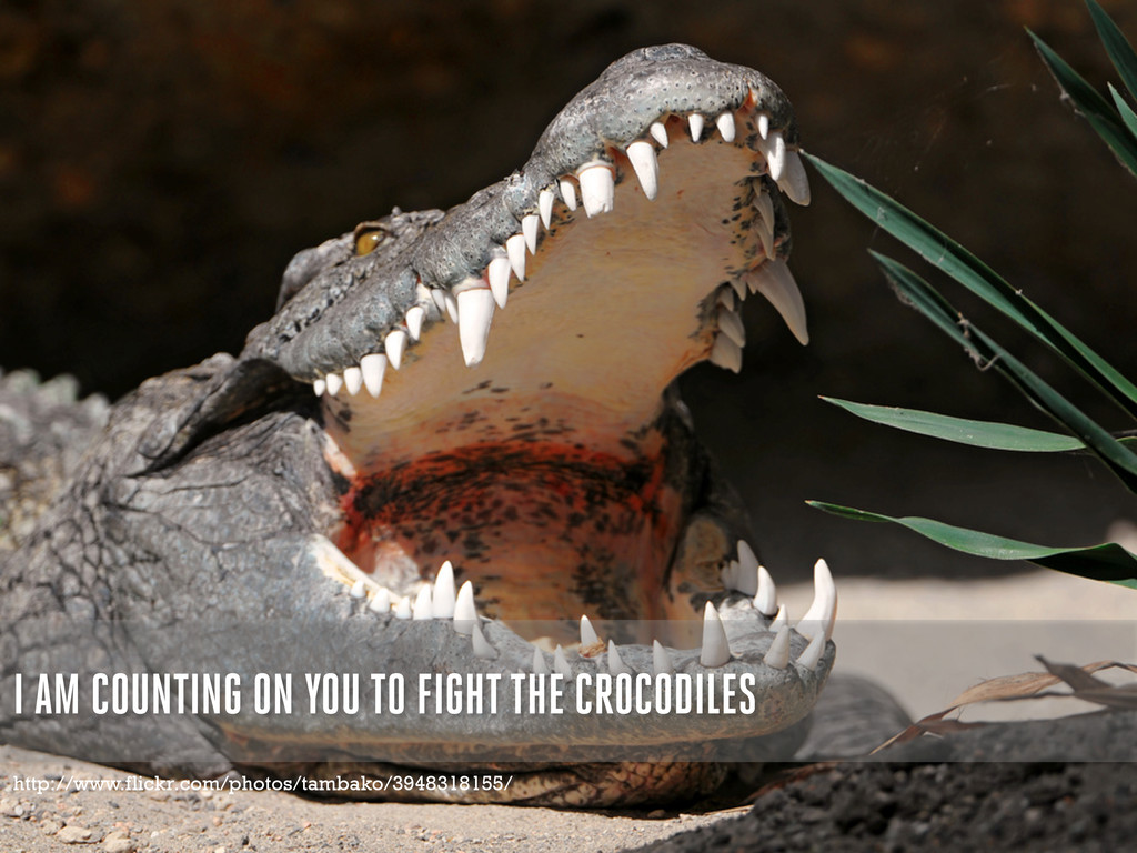 I AM COUNTING ON YOU TO FIGHT THE CROCODILES ht...