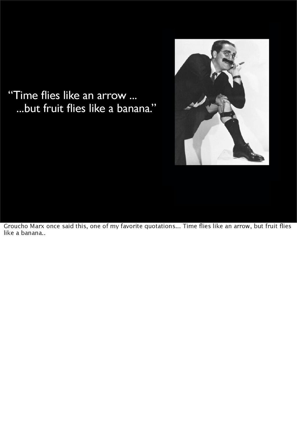 """""""Time flies like an arrow ... ...but fruit flies ..."""