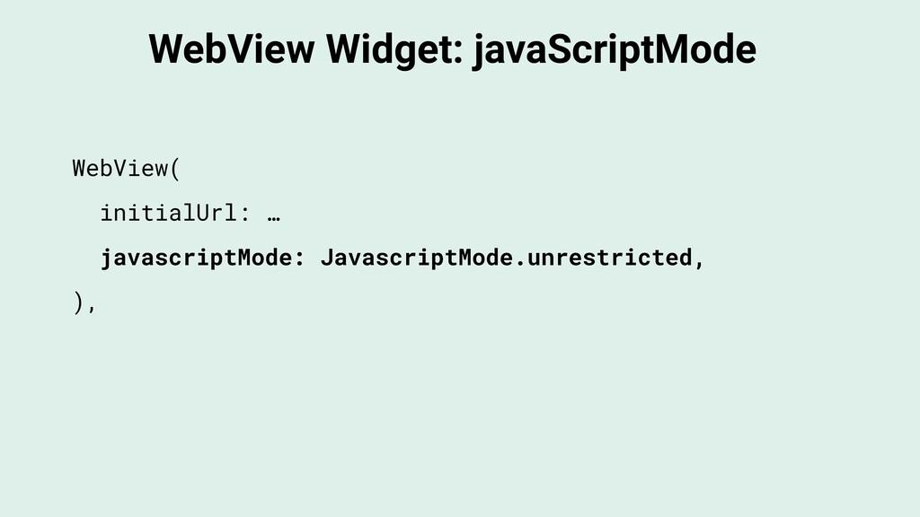 WebView Widget: javaScriptMode WebView( initial...