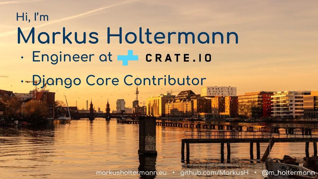 @m_holtermann Hi, I'm Markus Holtermann ● Engin...