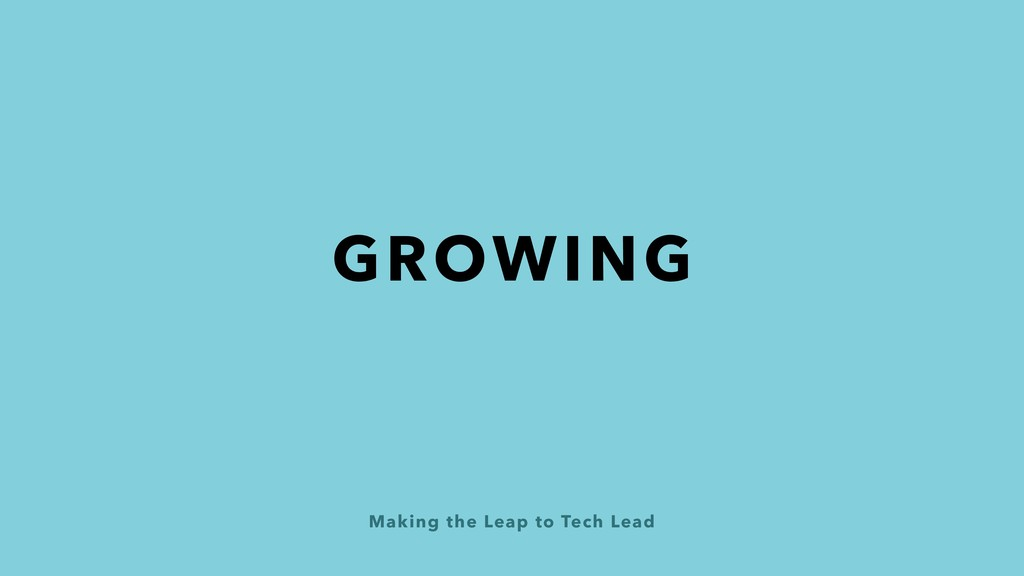 Making the Leap to Tech Lead GROWING