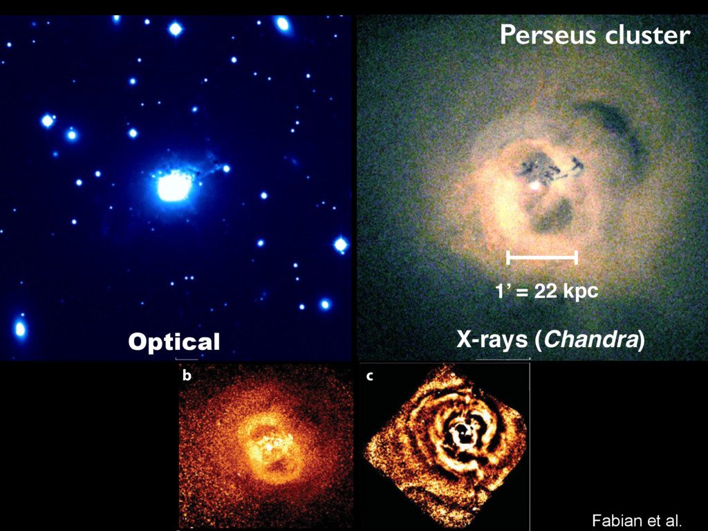 1' = 22 kpc X-rays (Chandra) Fabian et al. Pers...
