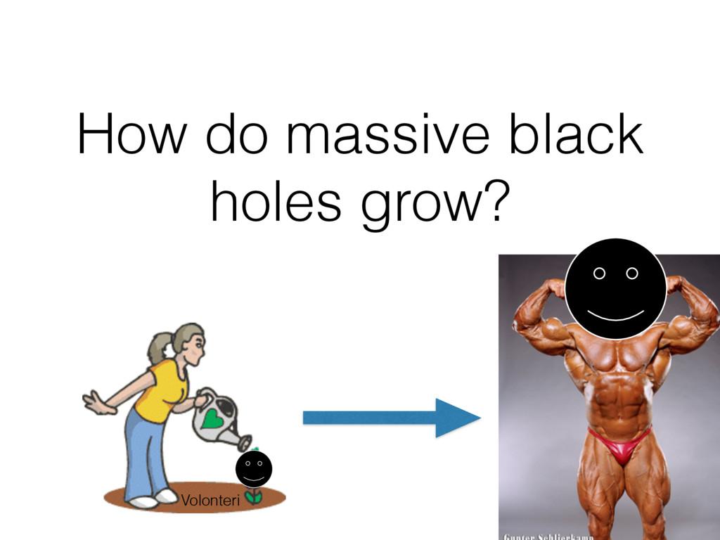 How do massive black holes grow? Volonteri