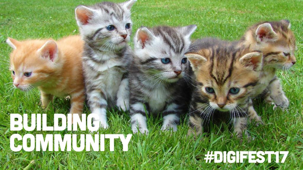#digifest17 Building community