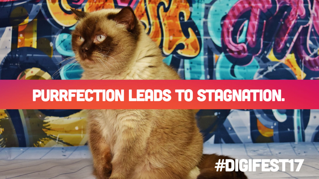 Purrfection leads to stagnation. #digifest17