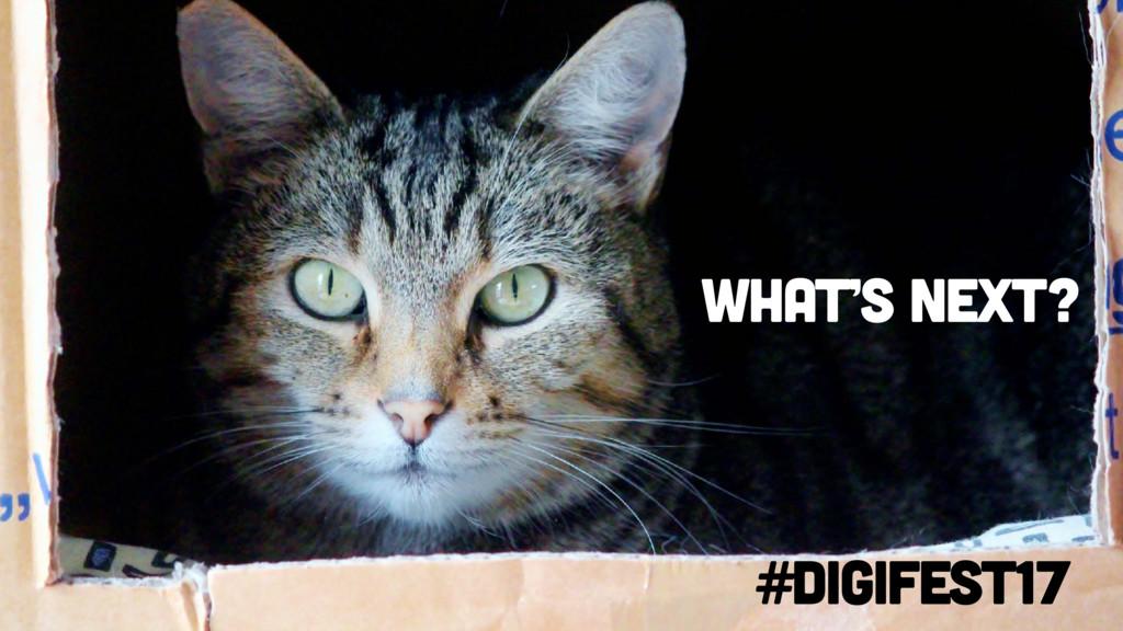 #digifest17 What's next?