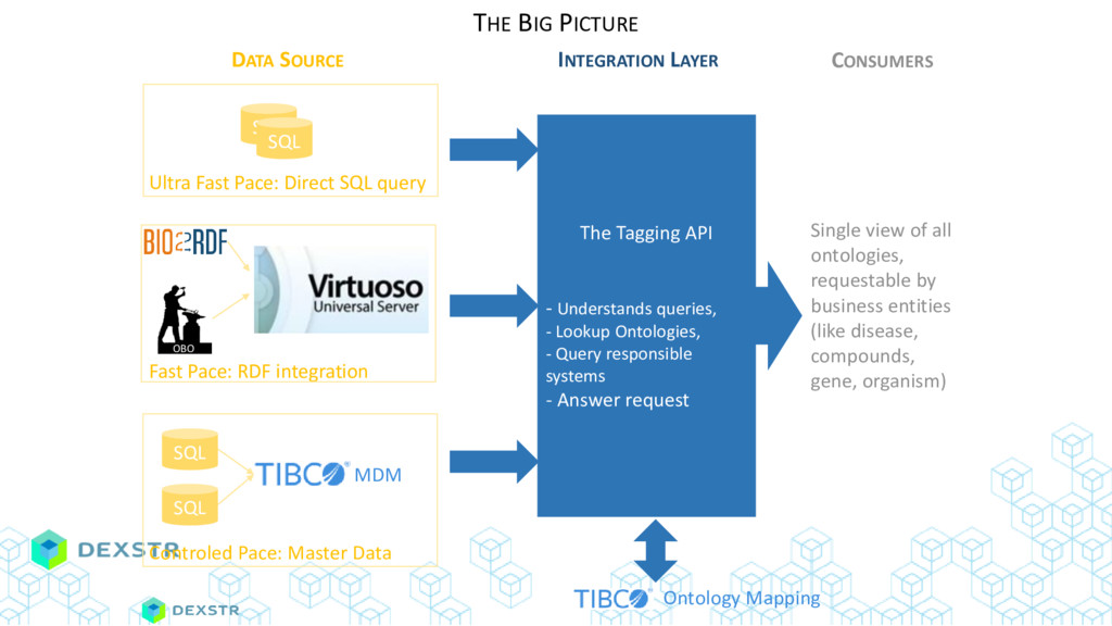 DATA SOURCE INTEGRATION LAYER CONSUMERS The Tag...
