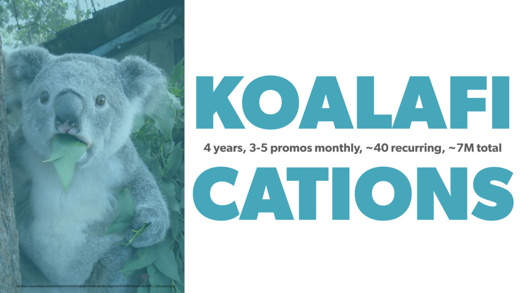 KOALAFI CATIONS 4 years, 3-5 promos monthly, ~4...