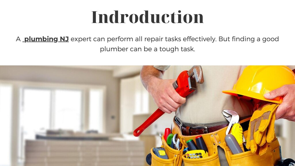 Indroduction A plumbing NJ expert can perform a...