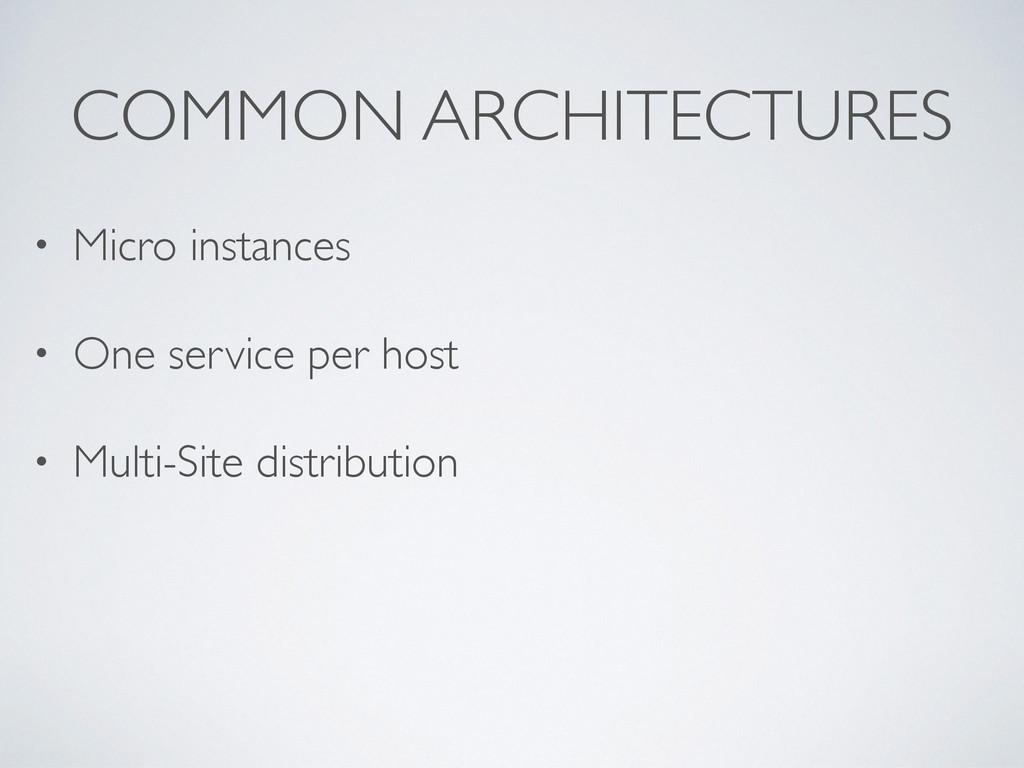 COMMON ARCHITECTURES • Micro instances • One se...