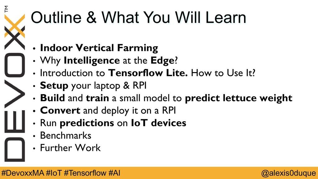 @alexis0duque #DevoxxMA #IoT #Tensorflow #AI Ou...