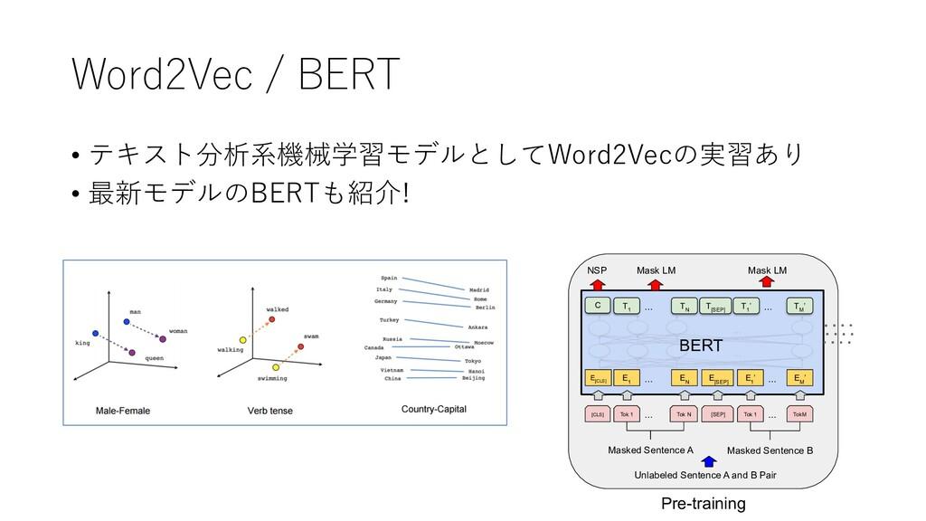 Word2Vec / BERT • テキスト分析系機械学習モデルとしてWord2Vecの実習あ...