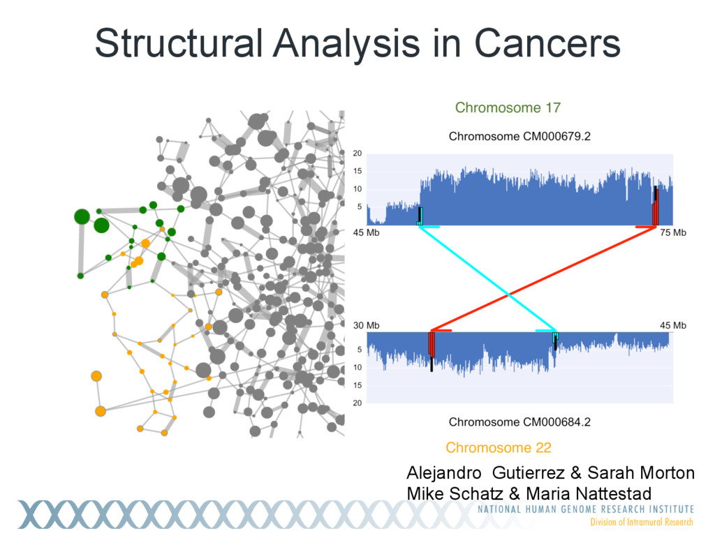 Structural Analysis in Cancers Alejandro Gutier...