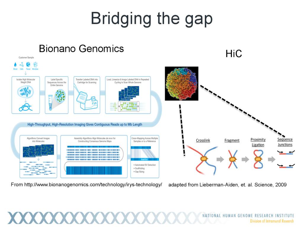 Bridging the gap From http://www.bionanogenomic...